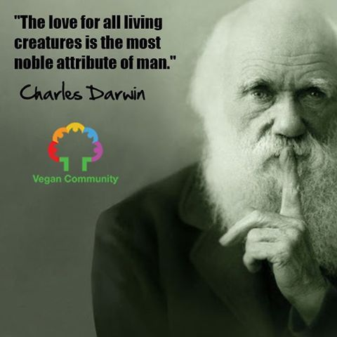the love for all living creatures is the most noble attribute of man ~ courtesy Charles Darwin #vegan