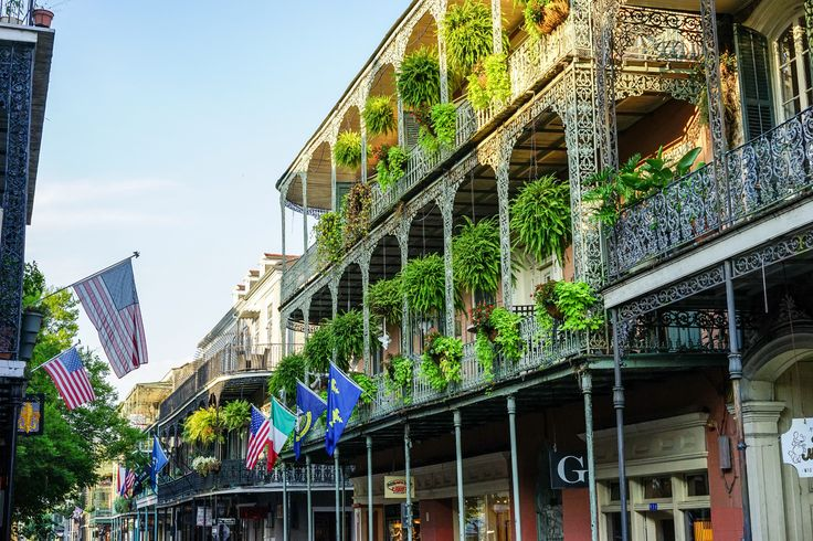 Haunted tours, swamp tours, culinary tours, historic tours... take your pick!