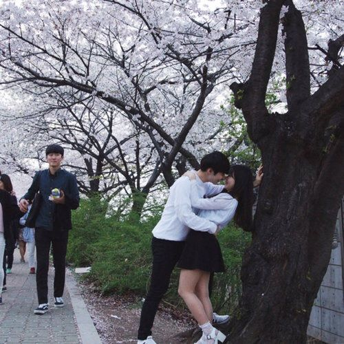 รูปภาพจาก We Heart It #asian #blossom #couple #kfashion #kiss #ulzzang