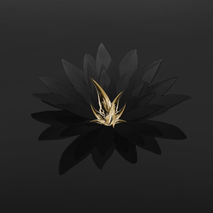 03 Flowers https://soundcloud.com/stumusic/blossom-w-akay-1