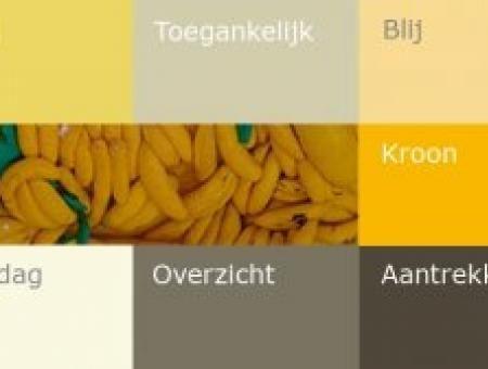 Geel is de kleur die het meest verwant is met het licht. Geel heeft te maken met logica, intellect en creativiteit. Deze felle, expressieve kleur maakt je blij en optimistisch.