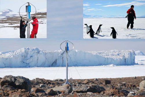 Micro eolico al Polo con i pinguini