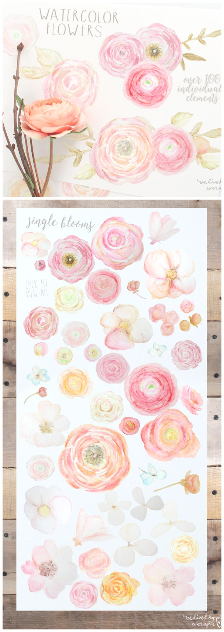 Gorgeous Watercolor Floral Graphics!