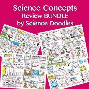 126 Best Sciencemath Staar Review Images On Pinterest School