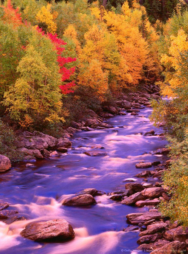 Autumn, Near Corner Brook, Newfoundland, Canada