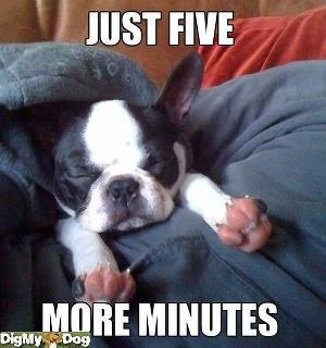 Just 5 more minutes ----