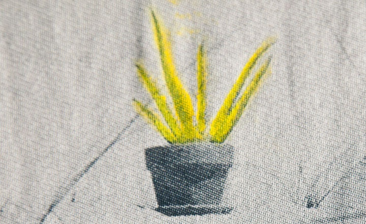 Baron Wells Organic Aloe