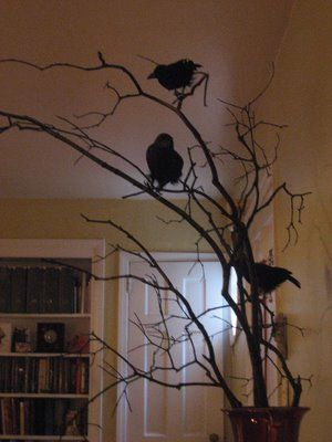 Great decor idea for Halloween...black birds OR owls in tree (I'd use the burned sagebrush branches from the foothills)