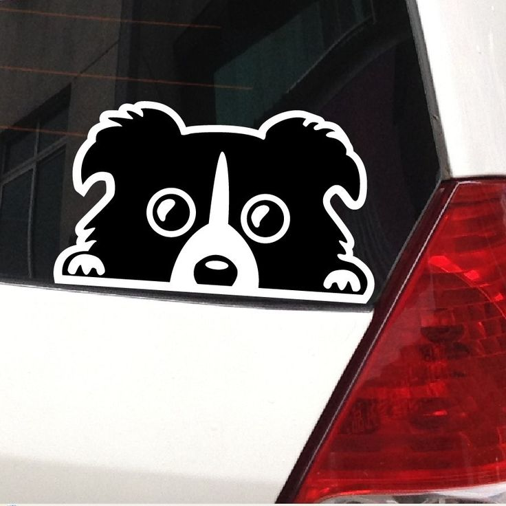 Best Car Dog Decals Images On Pinterest Decals Car Magnets - Truck decals for back window   online purchasing