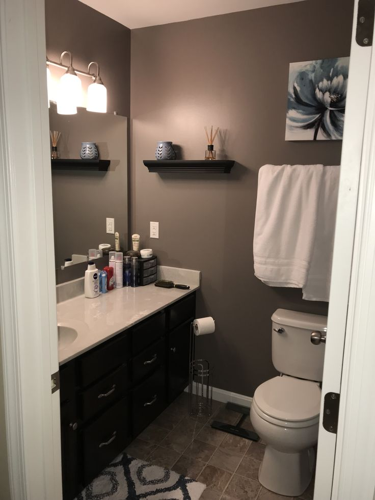 Sherwin Williams Mink In Small Master Bathroom With No