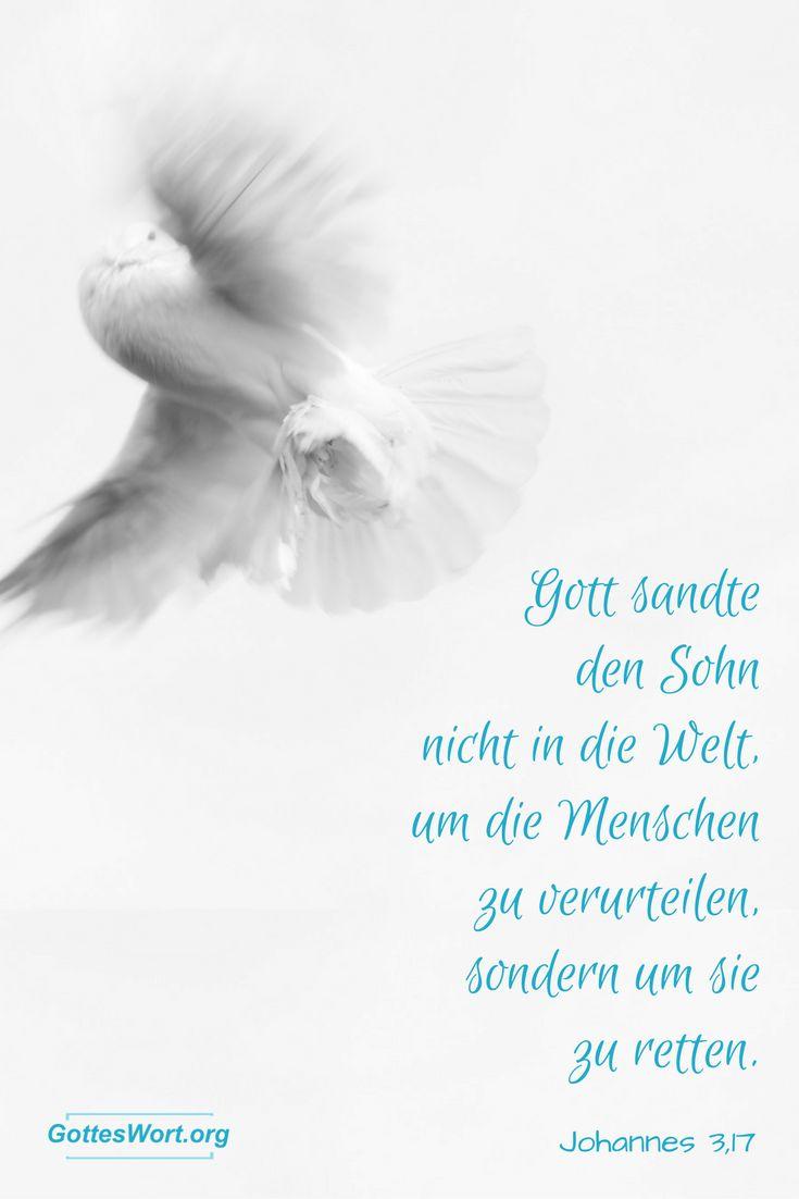 Gott sandte den Sohn nicht in die Welt, um die Menschen zu verurteilen, sondern um sie zu retten. Johannes 3,17    Mehr: http://www.gottes-wort.com/der-letzte-moment.html