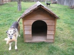 Make Your Own Homemade Dog House - plans to make Chester an outdoor shelter