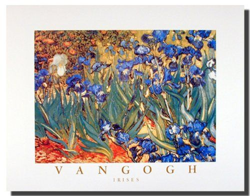 Add some tranquility with color to your home interiors by getting this beautiful Irises flower garden Vincent Van Gogh fine art print poster. This contemporary style poster will add some sunshine and color to your surroundings. It would be a perfect addition for your living room. Hurry up and grab this wonderful wall poster for its durable quality and high degree of color accuracy.