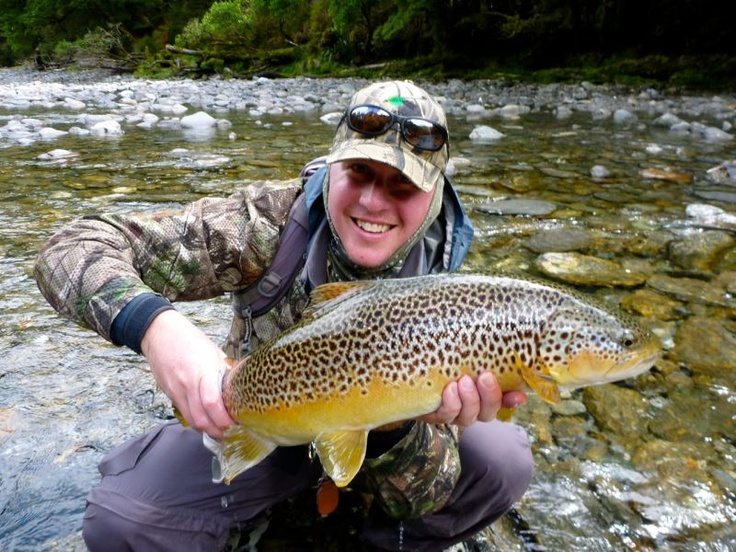 Brown trout perfection. Sight fishing in wilderness New Zealand. www.southernriversflyfishing.co.nz