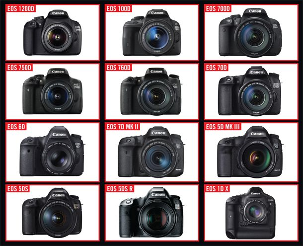 Canon cameras are packed with so many useful options there's a good chance you may overlook some. Here are 7 tips to get the most out of your Canon camera.