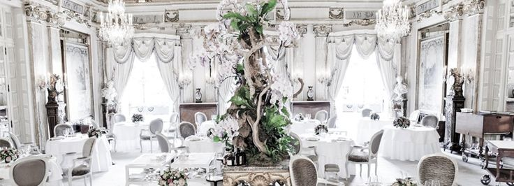 When in Monaco for the 2015 show, eat like royalty with a visit to the Louis XV-Alain Ducasse located in...