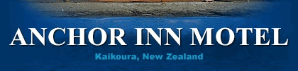 5 star luxury motel located on the waterfront in Kaikoura