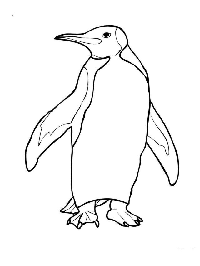 25 Marvelous Photo Of Penguin Coloring Page Penguin Coloring