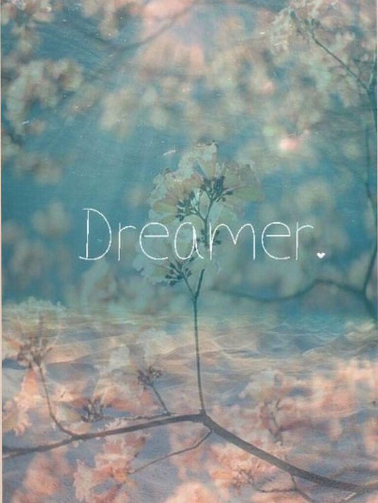 I'm a dreamer, what are you?