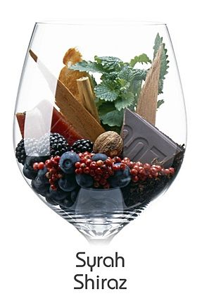 Shiraz  Beso de Vino