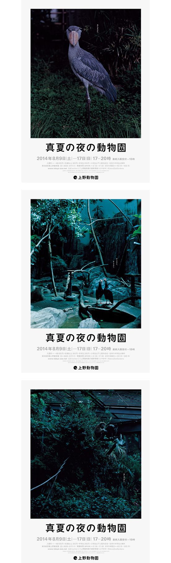 上野動物園「真夏の夜の動物園」のポスターを制作   NEWS   日本デザインセンター