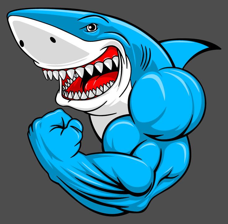 крутые картинки акул качков рецепт попробовала совсем