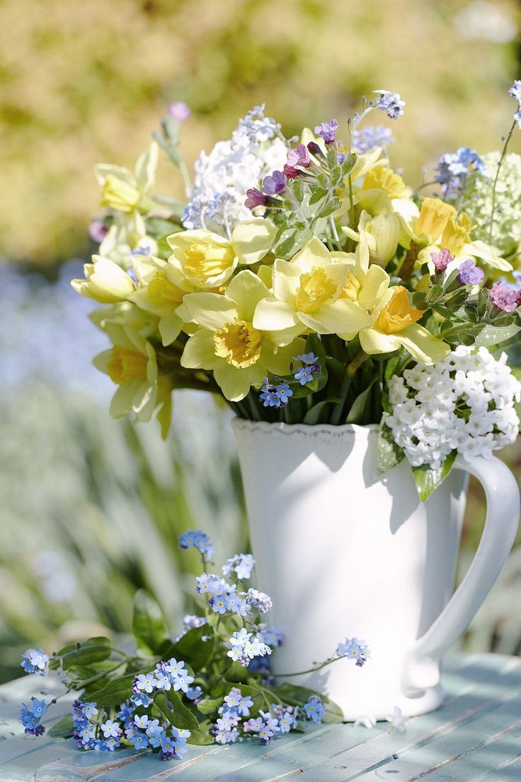 4/11/16 ~ Dear Allana, I'm so glad we get to honor you this week! Here are some lovely Spring flowers for you. I hope they will brighten your day. Congratulations! ~ Julianna