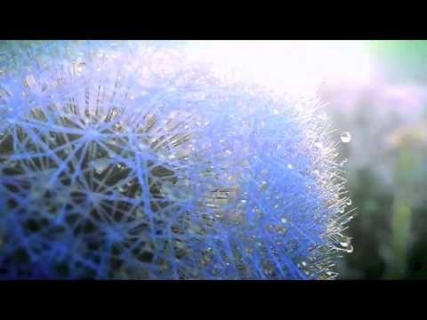JAMA - Vesna (Spring) - YouTube