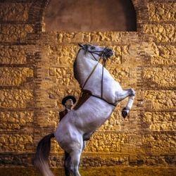 Ignacio Alvar ThomasMartinez - photographer / photography - One Eyeland