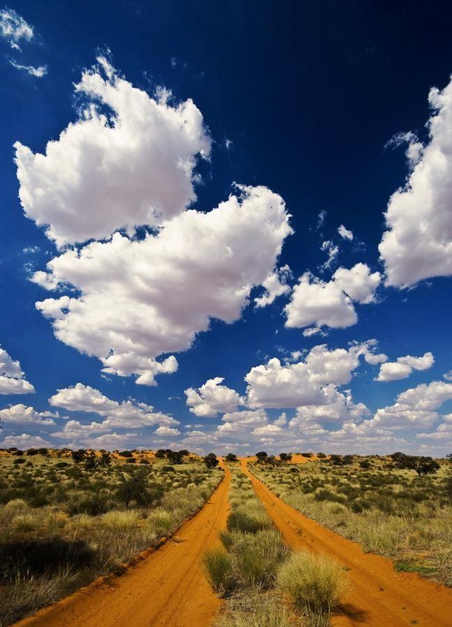 Kalahari, dirt road.