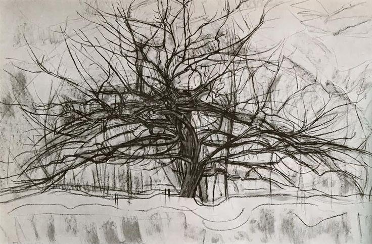 Opdracht 5: boom in de stijl van Piet Mondriaan