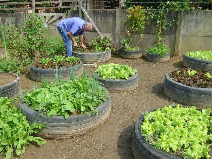 horta e jardim em pneus : horta e jardim em pneus:Hota em pneus velhos
