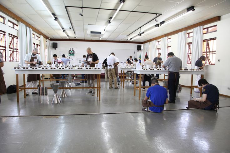 Cup of Excellence coffee cupping in Brazil