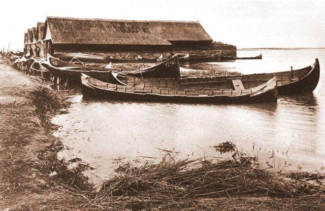 Arhiva foto - imagini diverse si orasul Tulcea -Blog Info-delta.ro