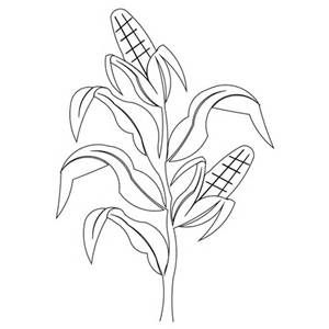 corn plant coloring pages - photo#24