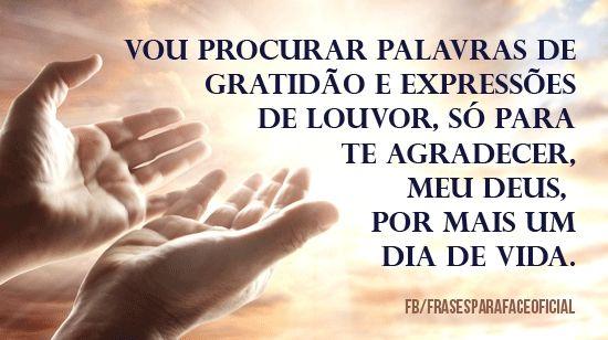 Vou procurar palavras de gratidão e expressões de louvor, só para te agradecer, meu Deus, por mais um dia de vida. (Frases para Face)