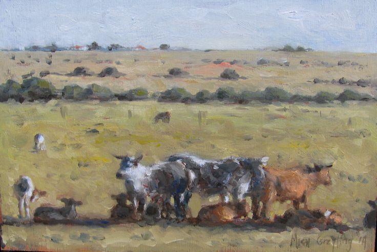 Cattle - Southern Cape