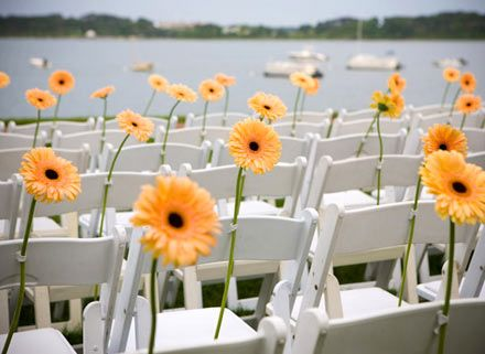 74 best gerbera daisies images on pinterest gerbera daisies gerbera daisy wedding centerpieces wedding ideas easy ceremony decor idea flowers on all junglespirit Gallery