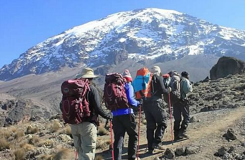 #KilimanjaroClimb is one of the popular outdoor activities of many people who love adventure and adrenaline activities. Know more @ https://www.northernmasailandsafaris.com/