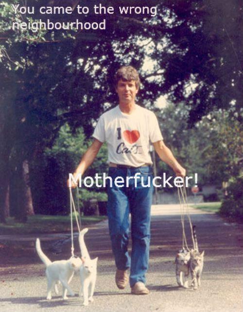 Crazy cat man: Cat Men, Wrong Neighborhood, Thug Life, The Neighborhood, Future Husband, I Love Cat, Crazy Cat, Cat Lovers, Cat Lady