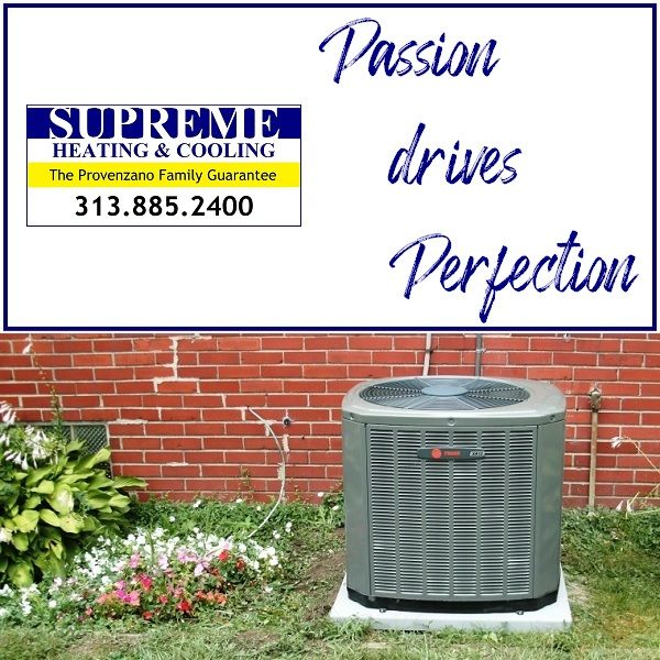 We Work With Energy Professionalism And Passion To Keep You And