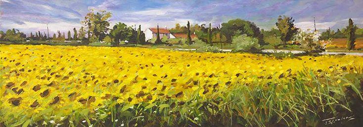 Sunflowers near Arles by James Somerville Lindsay | Edinburgh Arts