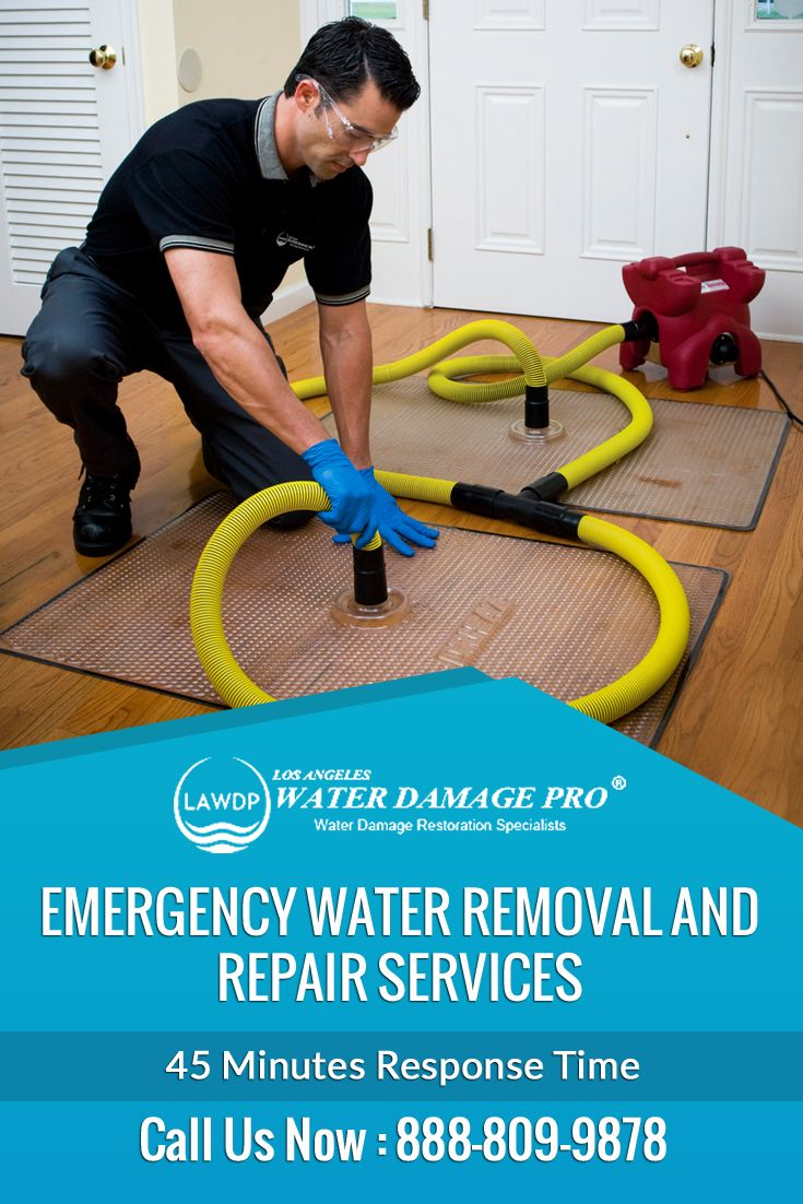 Water Damage in Ladera Ranch, CA. Sewage Damage, Mold Remediation