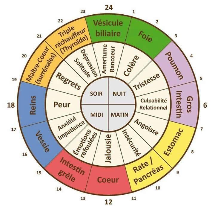 Les Emotions La Psychologie N Existe Pas En Medecine Traditionnelle Chinoise Medecine Roue Des Emotions Emotions
