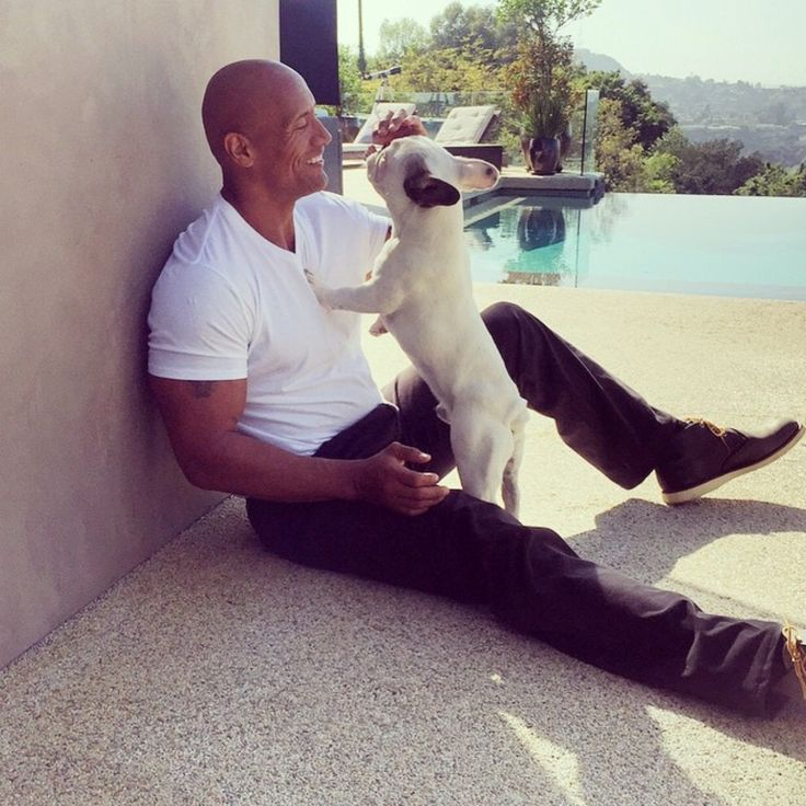 The Rock and dog