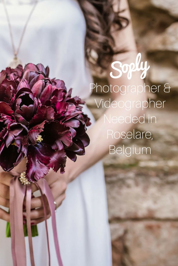#Photographer & #videographer needed for a #wedding in #Roselare #Belgium. See the #wedding job and apply by clicking the pin!