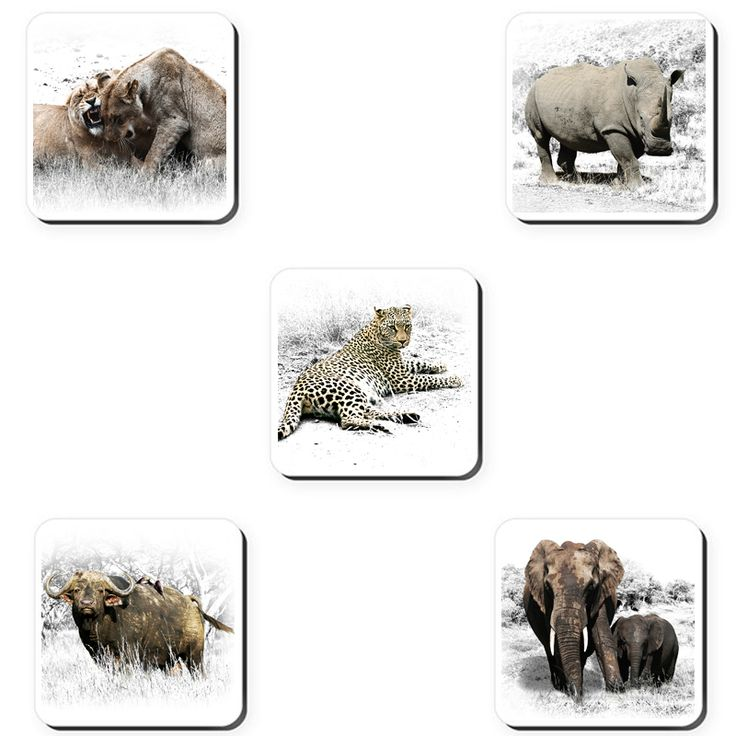 The Big 5 - Coasters | Order online at Ngunigalore.com - Delivery is FREE to anywhere in SA! | This special set of coasters features beautiful photographs of our iconic Big 5.  Set of 5.