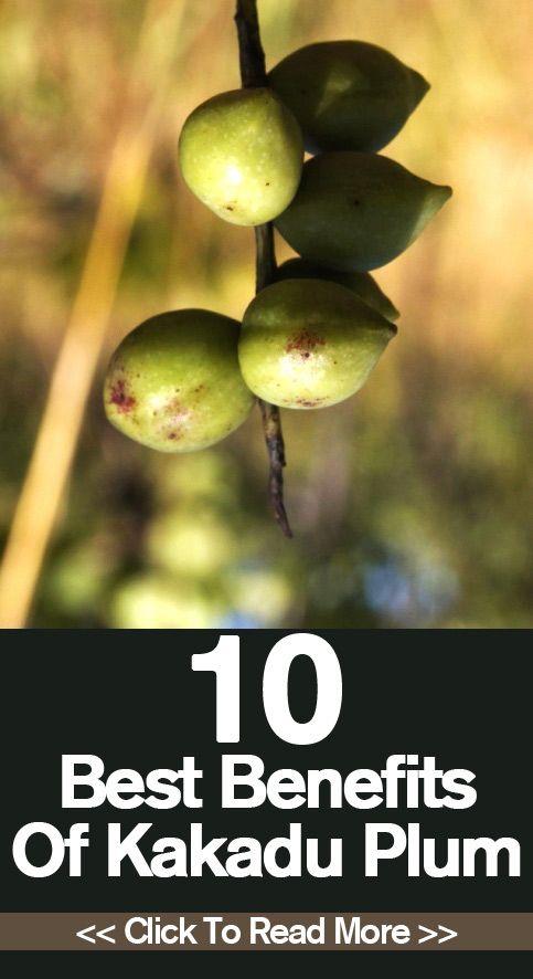 10 Best Benefits Of Kakadu Plum