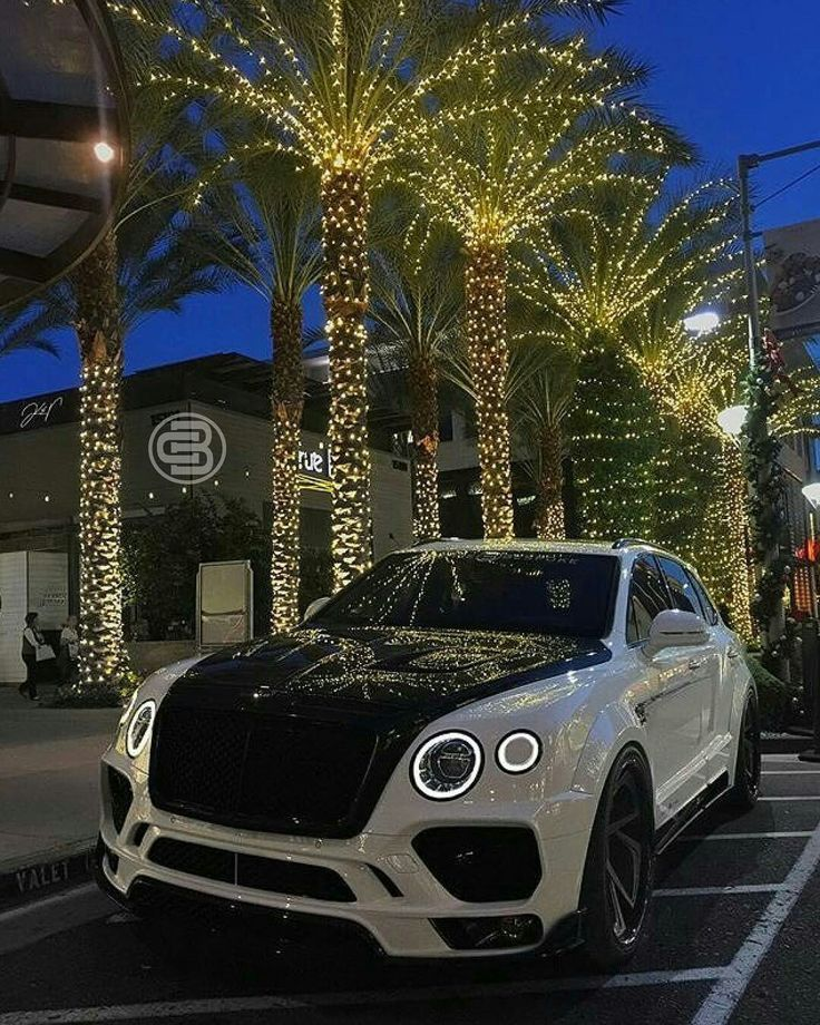 25 Best Ideas About Bentley Coupe On Pinterest: 25+ Best Ideas About Exotic Cars On Pinterest