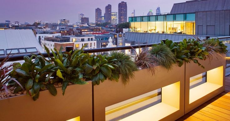 Green Ideas For Balcony Railing With Wooden Flooring And Dim Lighting.
